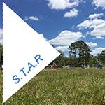 Puppy STAR Program at Mikamar Training Center