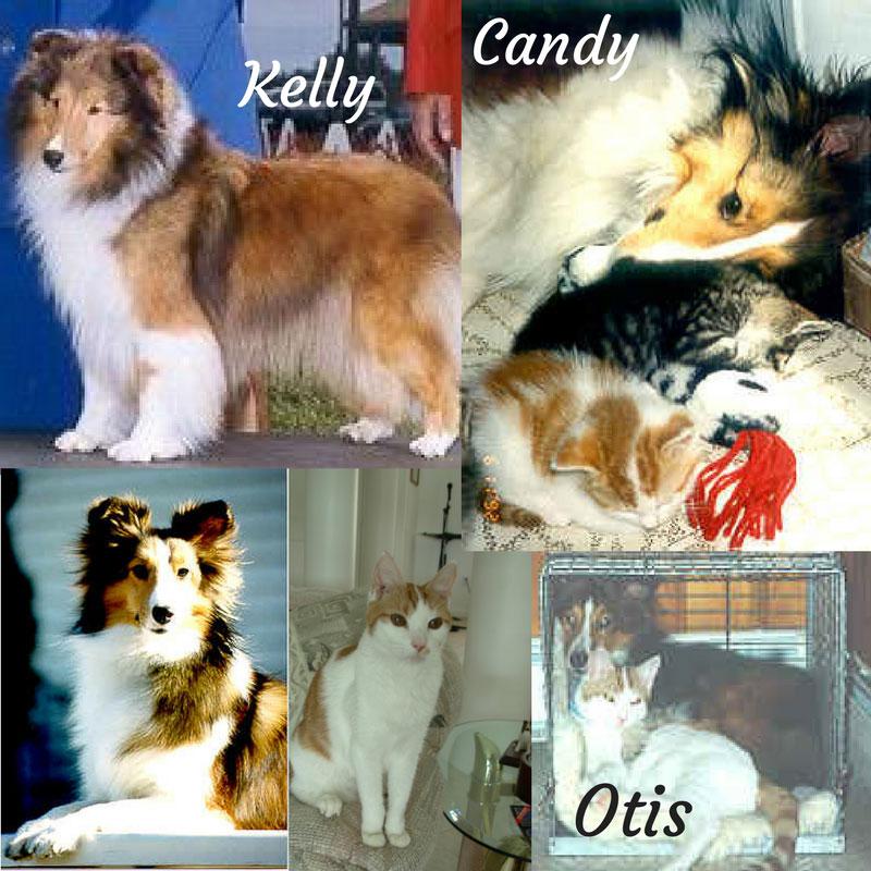 Kellly Candy Otis